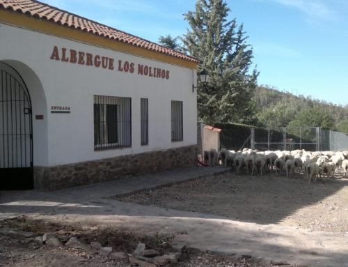 HostelPACK Albergue de los Molinos – Badajoz